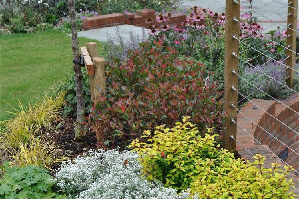 Garden Designer Hampshire Martyn Gingell Case Studies Beauteous Garden Designers Hampshire Design